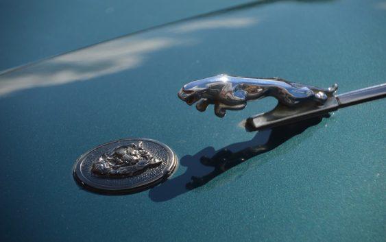 Jaguar začne vyrábět elektromobily. Miliony liber investuje do britské výroby