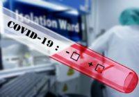 Umělá inteligence v boji proti koronaviru